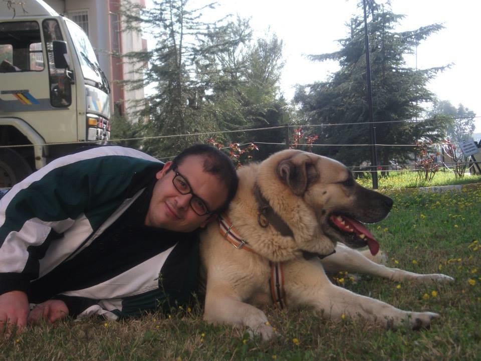 kEpVOD - En sevdiğiniz köpek cinsi nedir?
