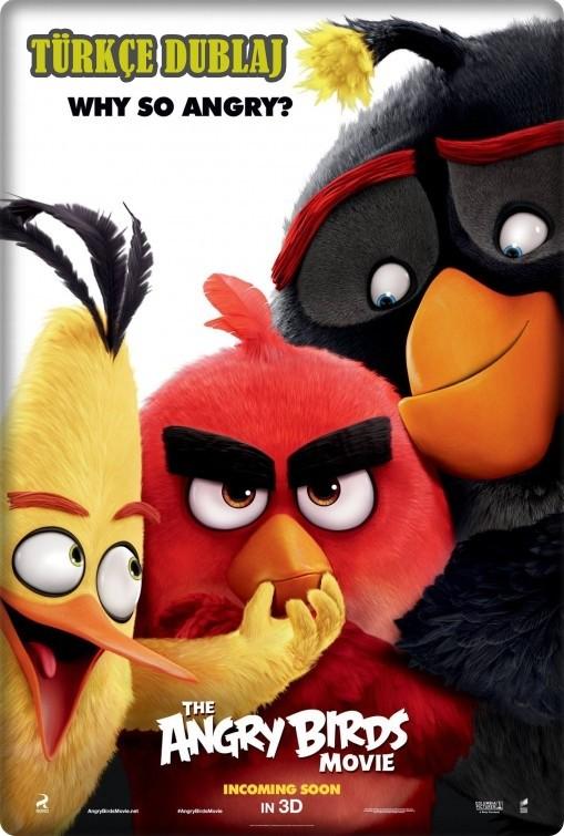 Kızgın Kuşlar - Angry Birds 2016 (Türkçe Dublaj) BRRip XviD