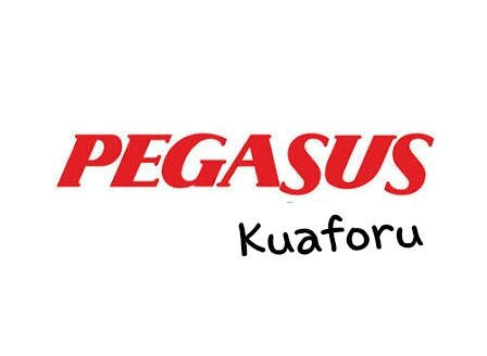 Pegasus Kuaforu