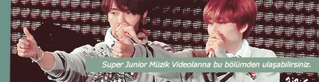 Super Junior Music Videos (Super Junior Müzik Videoları)