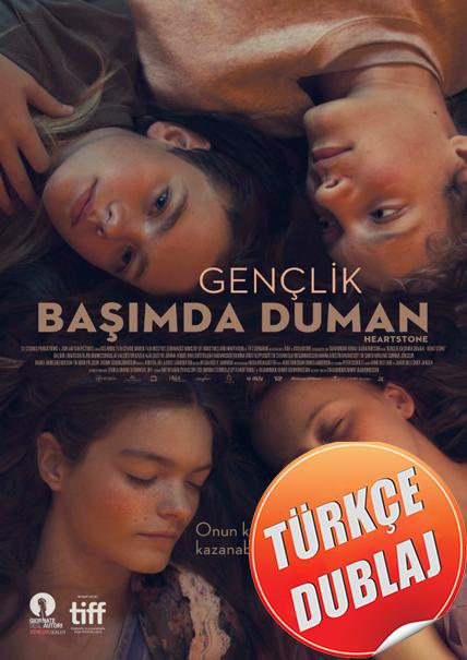 Gençlik Başımda Duman - Hjartasteinn (2017) Türkçe Dublaj Film İndir