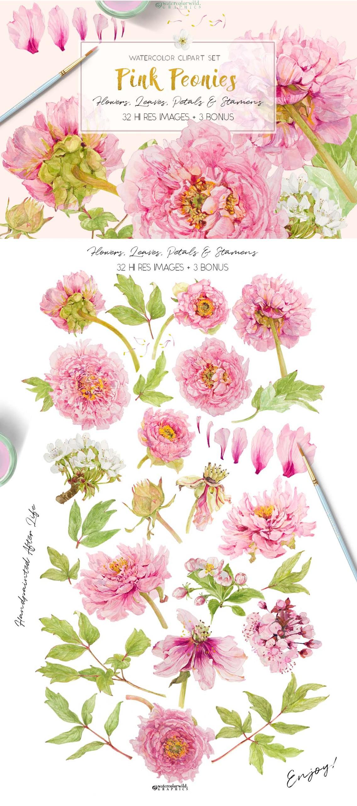 Pembe Şakayık çiçeği suluboya ve yaz posterleri