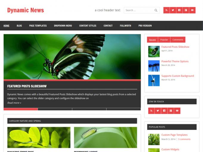 Dynamic News Lite Wordpress Teması