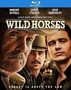 Vahşi Atlar - Wild Horses 2015 BluRay 720p DuaL TR-ENG