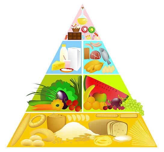 Besin Piramidi Nedir Besin Piramidinin Özellikleri