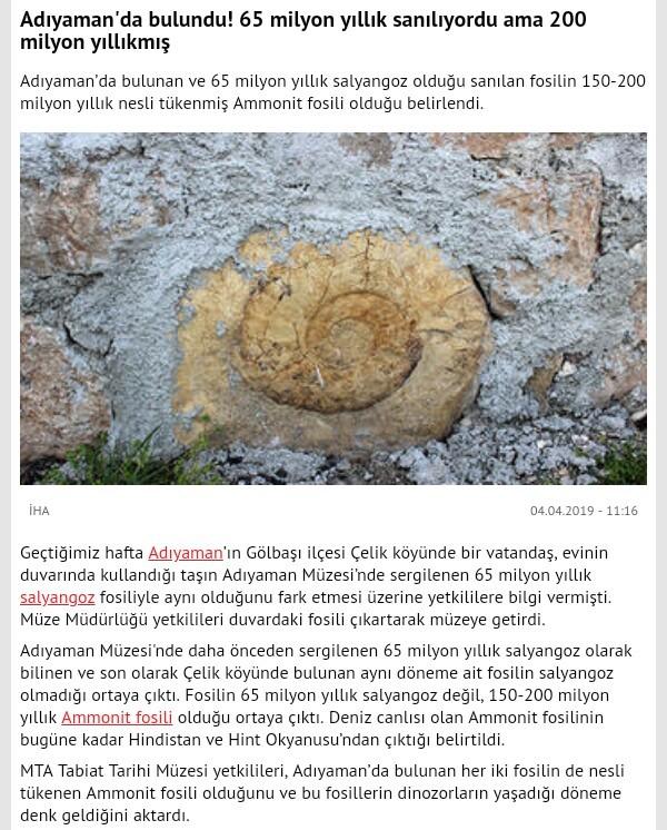 Adıyaman'da 200 Milyon Yıllık Fosil Bulundu!