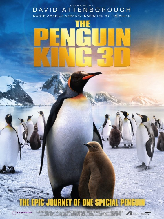 3d penguen