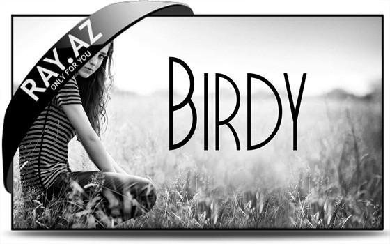 Birdy - Shelter