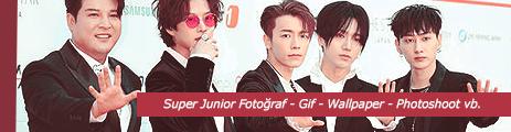 Super Junior Gallery (Super Junior Galeri)