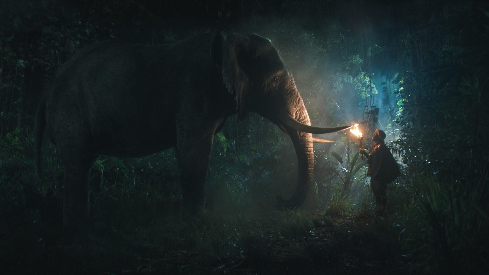 Vahşi Orman Filmini Full İndir Ekran Görüntüsü 2
