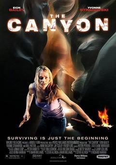 Kanyon - 2009 Türkçe Dublaj DVDRip indir