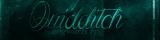 Quidditch Oyuncusu