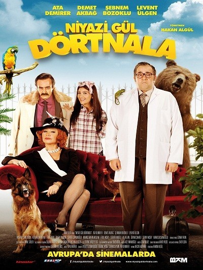 Niyazi Gül Dört Nala 2015 (Yerli Film) DVDRip XviD