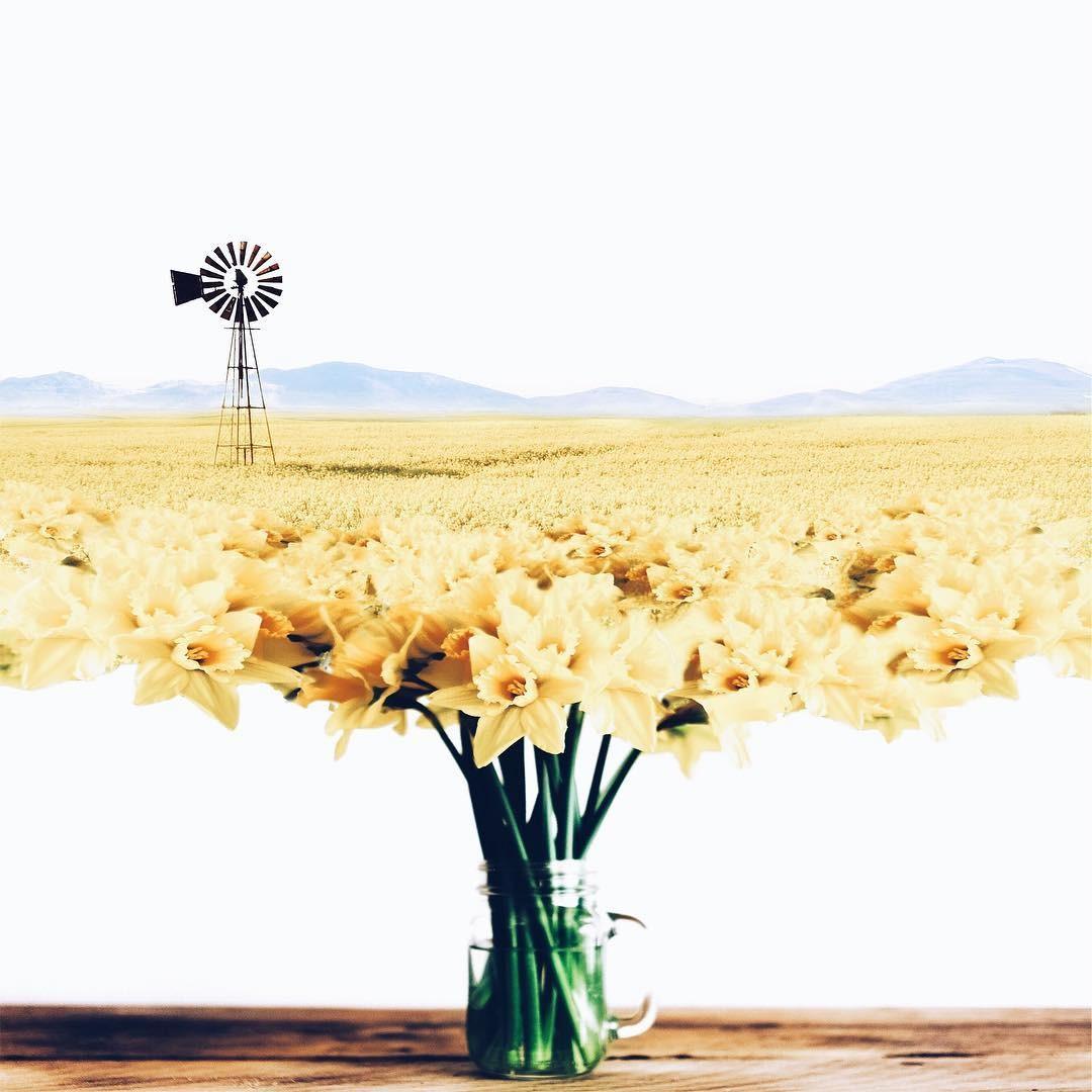 Luisa Avezedo'nun Umulmadık Nesneleri Birleştirerek Yaptığı Olağan Dışı Sanat 13. resim