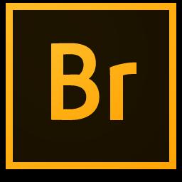 Adobe Bridge CC 6.1.1.10 Final TR | Katılımsız
