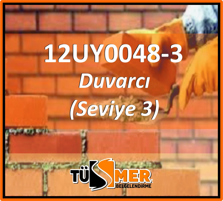 12UY0048-3 Duvarcı (Seviye 3)