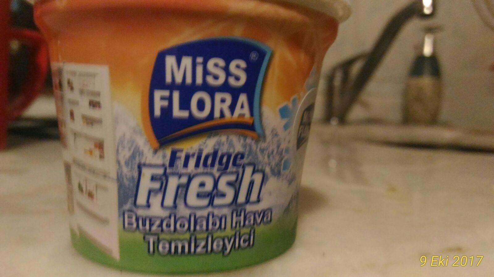 Buzdolabındaki Yemek Kokusu Nasıl Giderilir