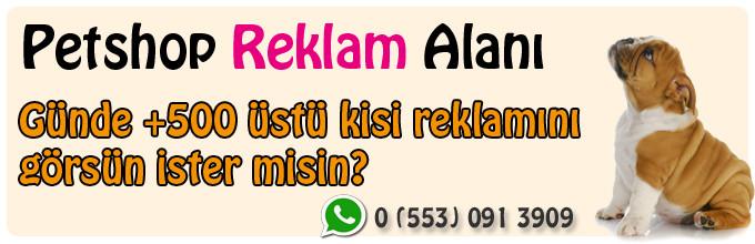 kizilay_banner_728X090