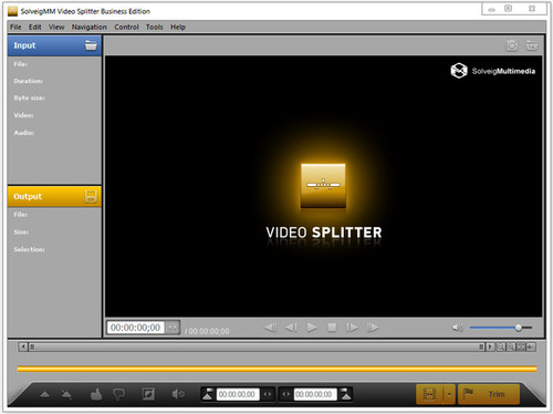 SolveigMM Video Splitter 6.1.1802.19 Business Edition Beta