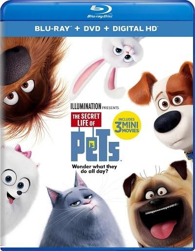 Evcil Hayvanların Gizli Yaşamı 2016 BluRay 720p – 1080p DUAL TR-ENG – Film indir