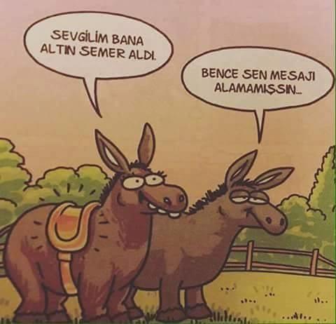 r6qZma - Karikatürler .. :)