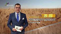 Türkiye'de Süt Üretimi