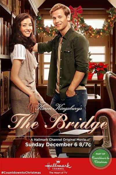 The Bridge 2015 WEBRip XviD Türkçe Dublaj indir