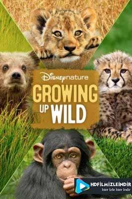 Vahşi Büyüyenler - Growing Up Wild (2016) Türkçe Dublaj İzle İndir Full HD 1080p Tek Parça