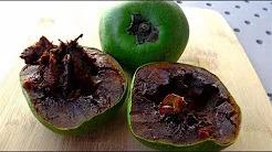Çikolata Meyvesi – Kara Sapot