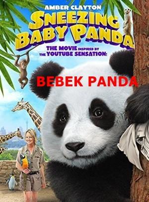 Bebek Panda – Sneezing Baby Panda – The Movie 2014 BRRip XviD Türkçe Dublaj – Tek Link