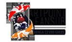 ArtPoint Fansub