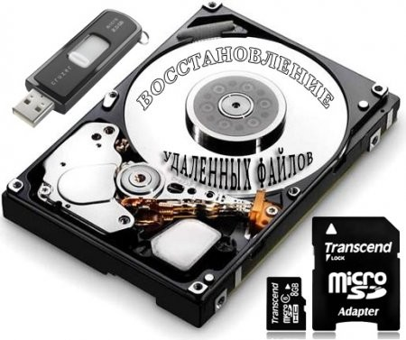 Raise Data Recovery for FAT / NTFS Full  İndir