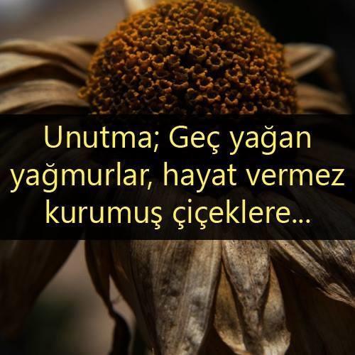 Kəlamlar