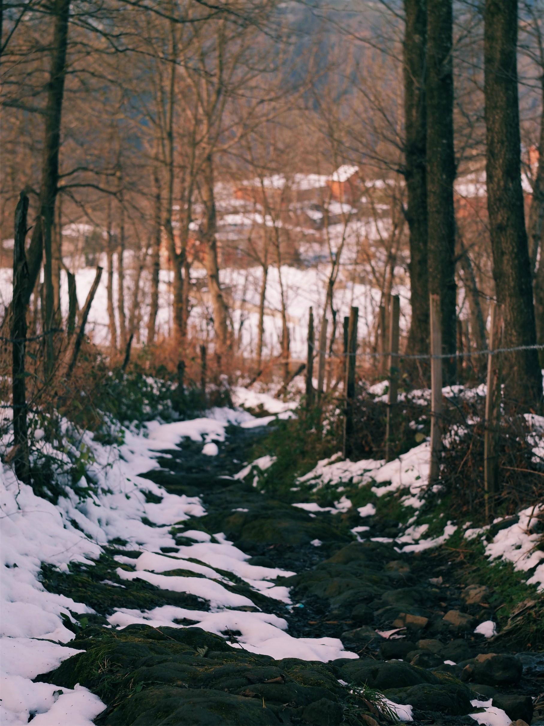 Ynt: 2017 Ocak ayı konusu: Kar-Kış