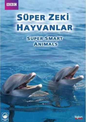 BBC SUPER - AKILLI HAYVANLAR  - 2 Bölüm (Belgesel)(2012 - Türkçe Dublaj) | Yandex Disk İndir