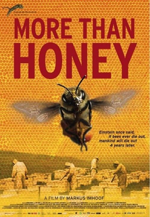 Baldan Acı – More Than Honey (BELGESEL) (Türkçe Dublaj) Yandex Disk İndir