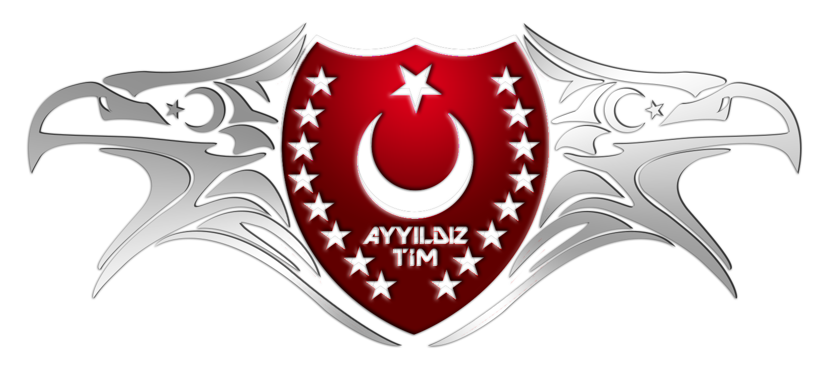 AYYILDIZ HACK TEAM
