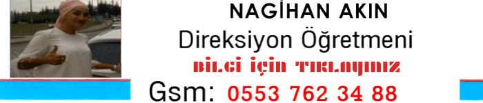 https://www.kislacay.com/nagihan-akin-ozel-direksiyon-dersi-verilir/