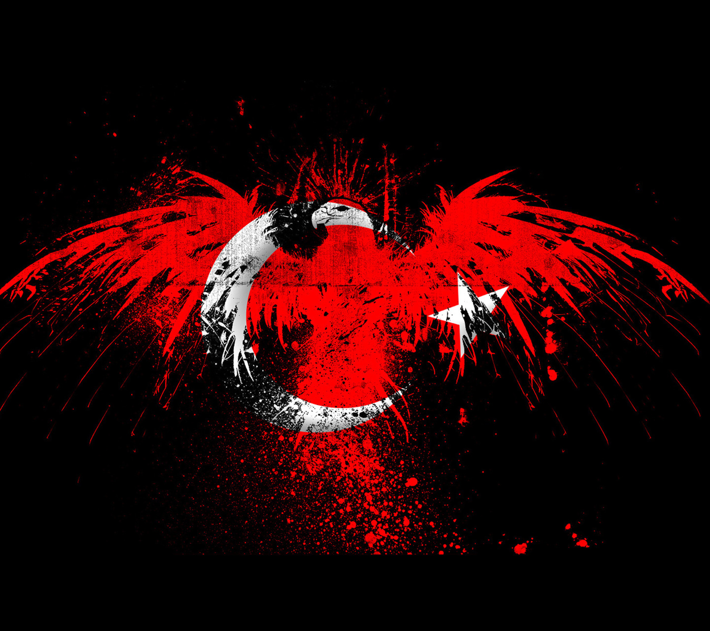 Resim http://i.hizliresim.com/xBYogj.jpg