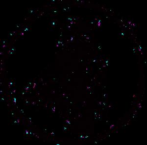 avatar_Ra