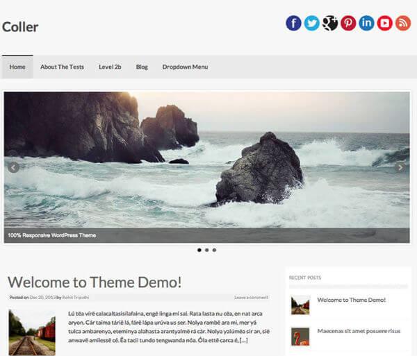 Wordpress Premium Coller Teması