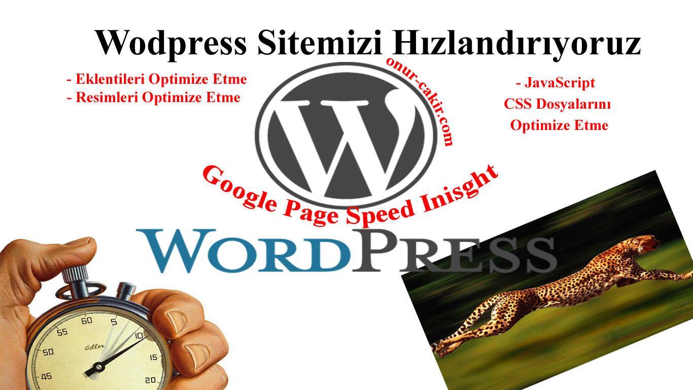 Wordpress Sitesi Hızlandırma - Sunucu Yanıt Süresi Kısaltma