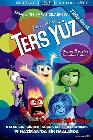 Ters Yüz – Inside Out 2015 BluRay 720p x264 DUAL TR-EN – Tek Link