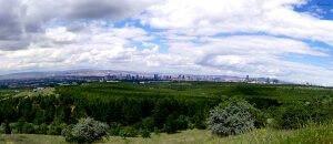 odtü ormanı manzara fotoğrafı