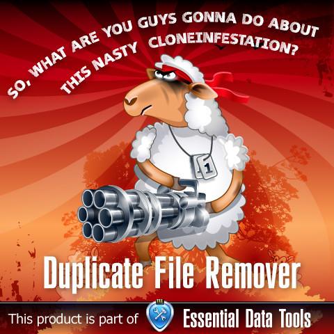 Duplicate File Remover Full İndir