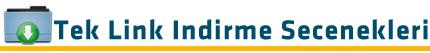 Tek Link indir - Dabbe 6 2015 720p DVDRip Upscale DD5.1 AC3 - Tek Link indir