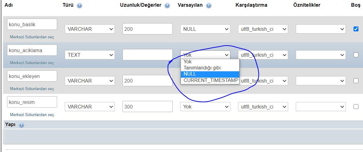 null olarak değerleri ayarla
